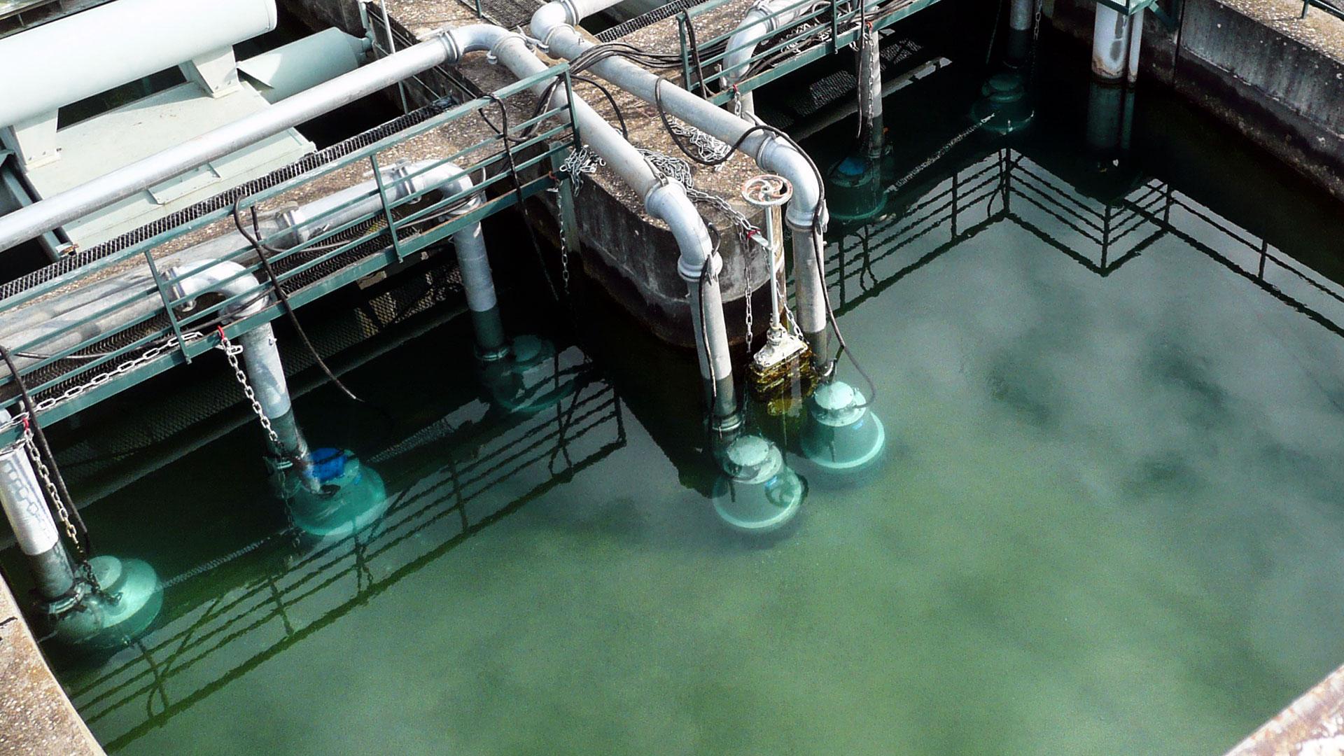 Pompes submersibles électriques immergées dans un bassin d'eau claire vue rapprochée